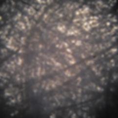 Khadi paper-grayscale-lr.jpg