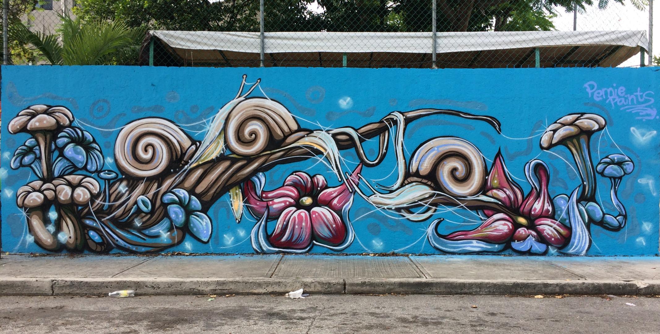 Street wall, Cancun mexico