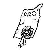 icon_square_pro.jpg