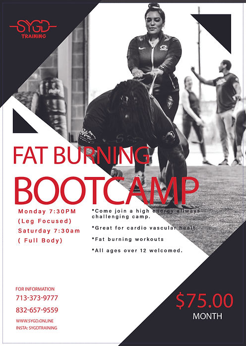 Bootcamps Temp..jpg