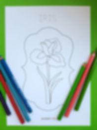 flori de colorat 2.jpg
