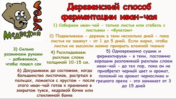 Чек-лист ДЕРЕВЕНСКИЙ СПОСОБ ФЕРМЕНТАЦИИ