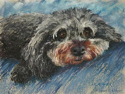 """Reilly"" dog portrait"