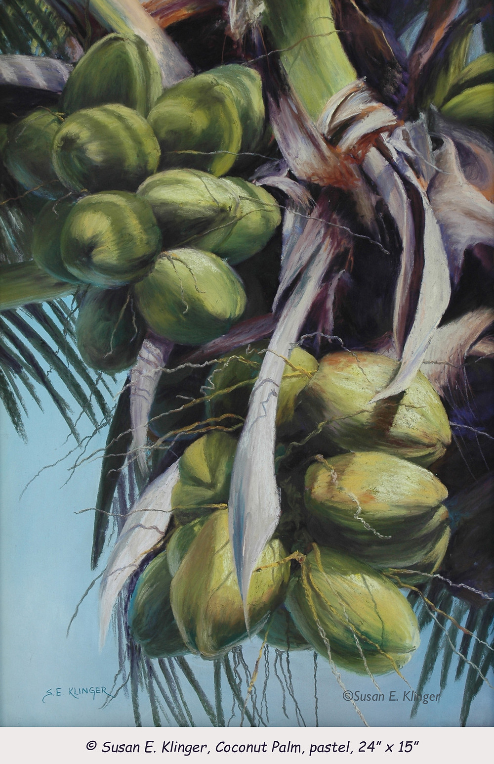 """""""Coconut Palm"""", pastel, first in a series"""