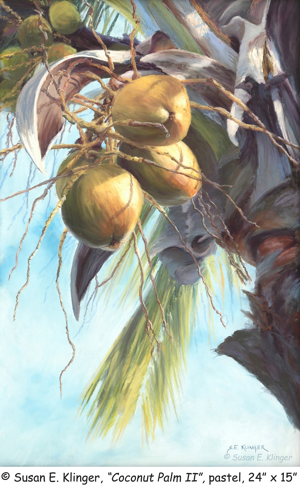 """""""Coconut Palm II"""", pastel, second in a series"""
