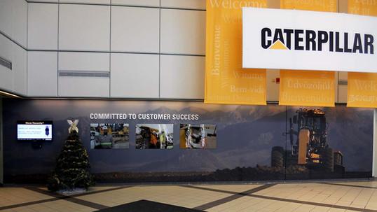 Cat_LC_wall6_webz.jpg