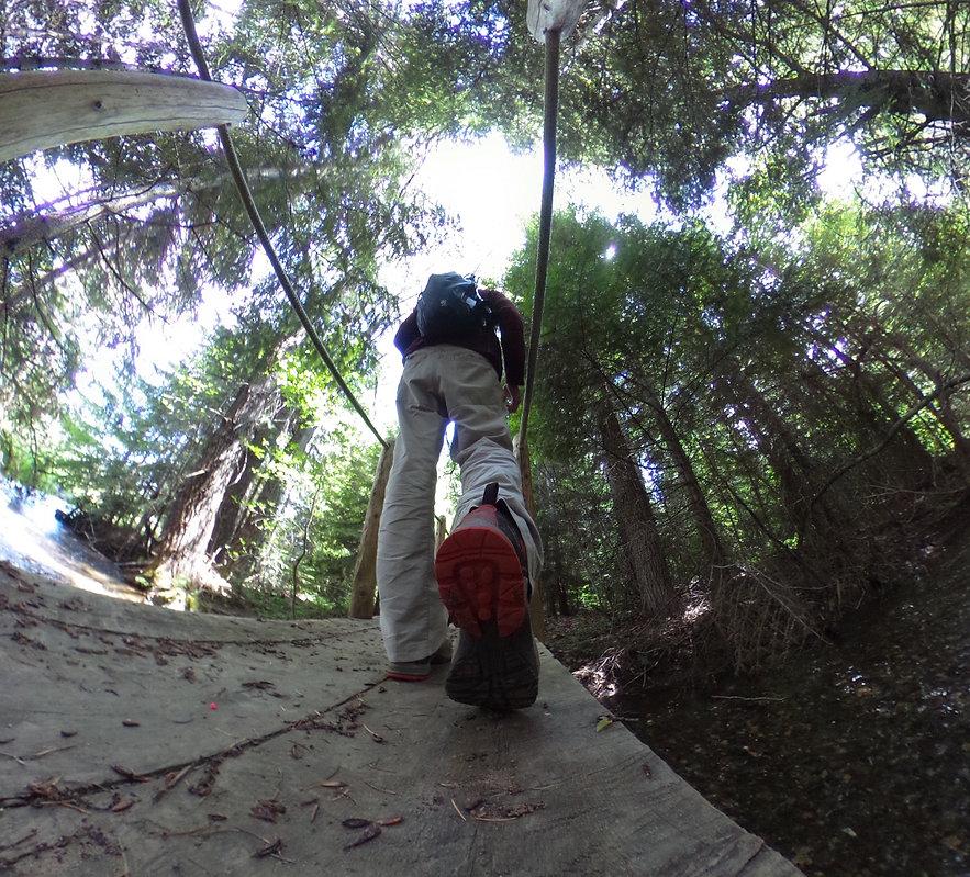 hike 1200 jpg.jpg