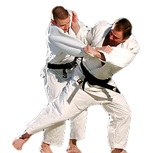 adult judo.png