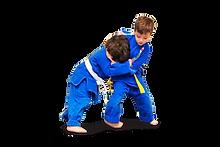 minis judo.png