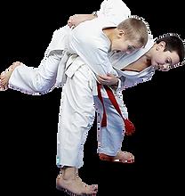 beggimners judop 2.png