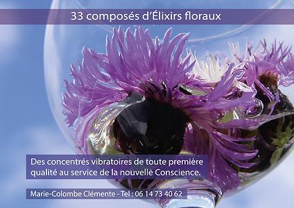Carnet elixirs Floraux.png