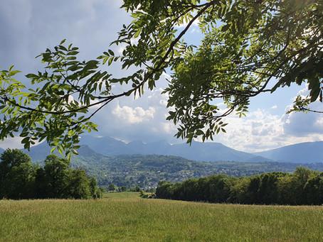 La colline de la Trousse trois vidéos pour découvrir cet incroyable poumon vert de Chambéry !