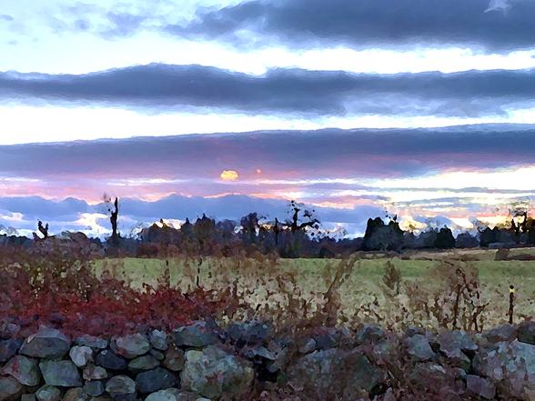 Sunset Over Sheep Pasture