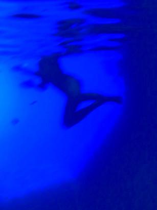 Modra Oblik 4