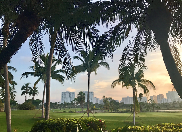 Miami Turnberry Palms 2