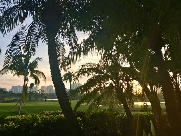Miami Turnberry Palms