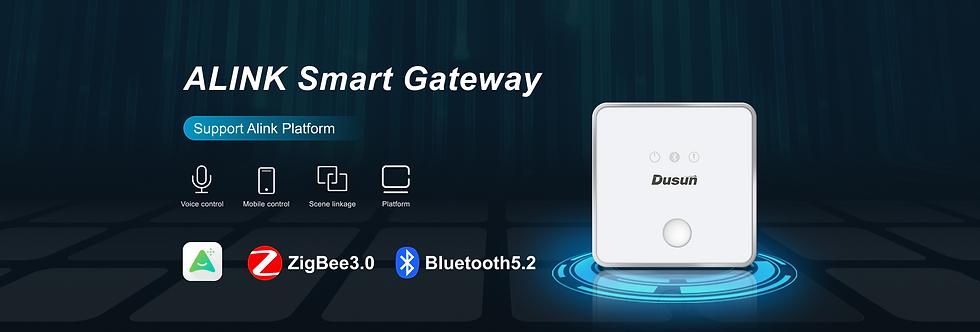 ALINK Smart Gateway_01.png