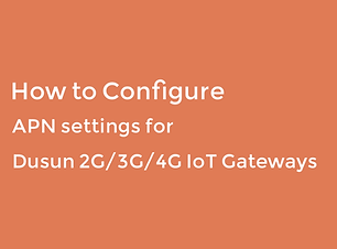 how_to_configure_APN_setting_for_Dusun_g