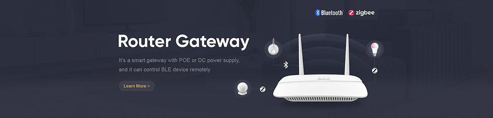 Router-Gateway.jpg