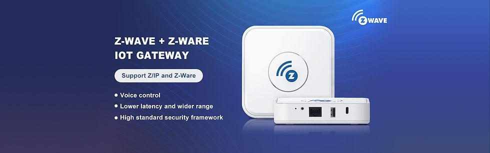 DSGW-210-ZIP+Z-Ware-Gateway-Marketing-Page-V1_01.jpg