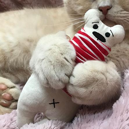 catnip polar bear kicker.JPG