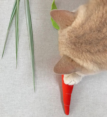 Designer Cat Toys