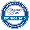 QS ISO 9001 2015 logo-2.png