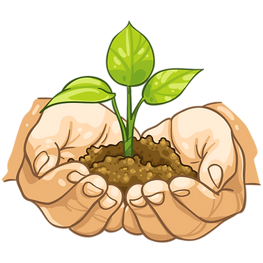transparent-leaf-soil-plant-clip-art-han