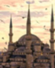 turkey2-01.jpg