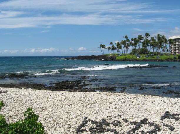 Hawaiian Beach by Rachel
