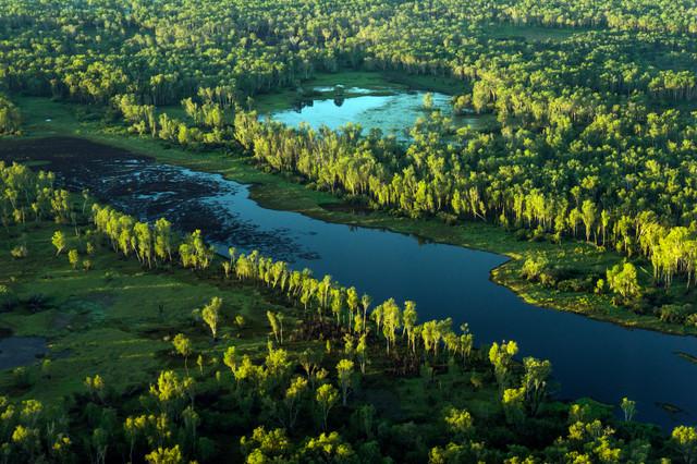 Earth - Paradise Billabong, Northern Territory