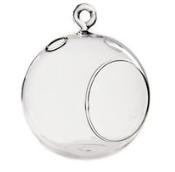 Hanging Glass globe terraniums