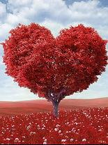 22-Love-.DPI_601.jpg