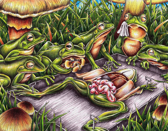 Frog Funeral