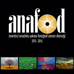 2016_anafod_2015_16.png