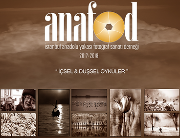 2018_anafod_icseldusseloykuler.png