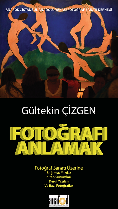 2013_anafod_gultekincizgen.png