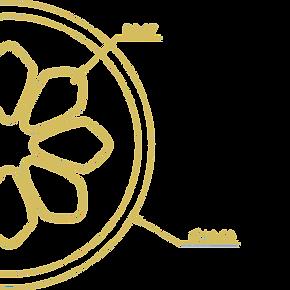 graphic-01_6ef4b61c-4a4f-4a72-8baa-ec459