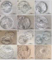 Embryo Grade