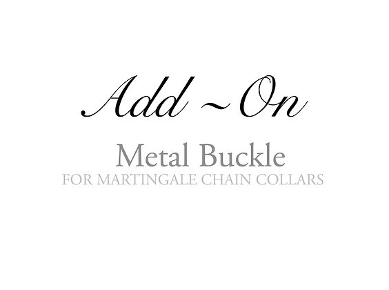 ADD-ON: Metal Buckle
