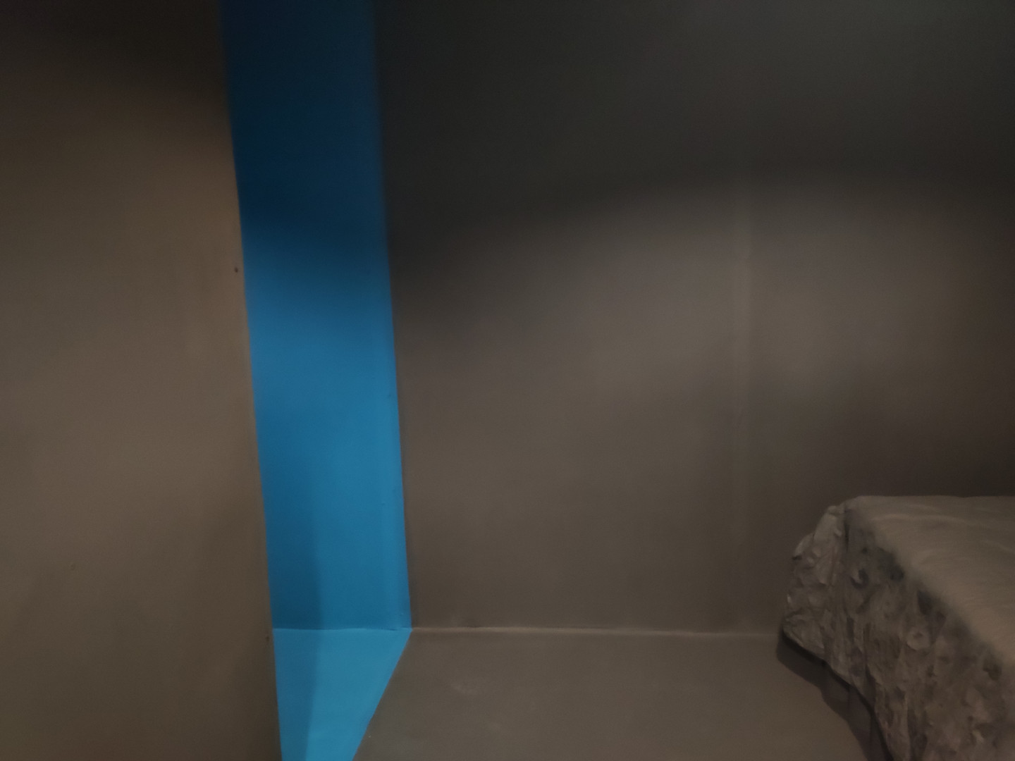 Hidey Hole, Reading Room, 2020. RSA New Contemporaries 2020, Royal Scottish Academy, Edinburgh.Paint supplied by Earthborn Paints