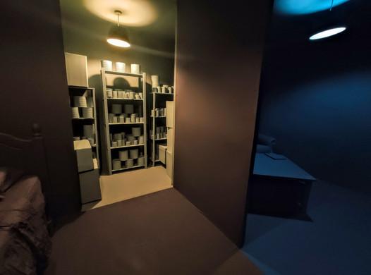 Secret Room, Hidey Hole, Reading Room, 2020. RSA New Contemporaries 2020, Royal Scottish Academy, Edinburgh. Paint supplied by Earthborn Paints