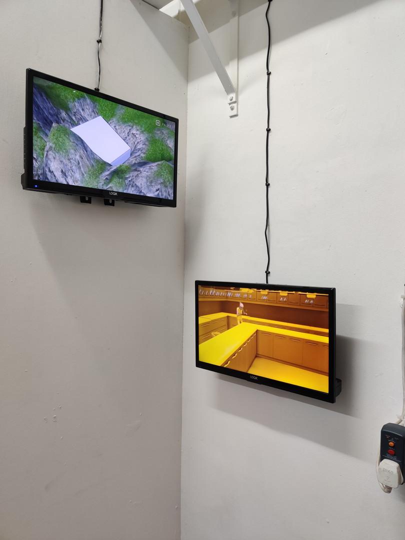 Safe Haven and Kernel of Truth, 2019, Extinction Rebellion at Summerhall, Edinburgh.