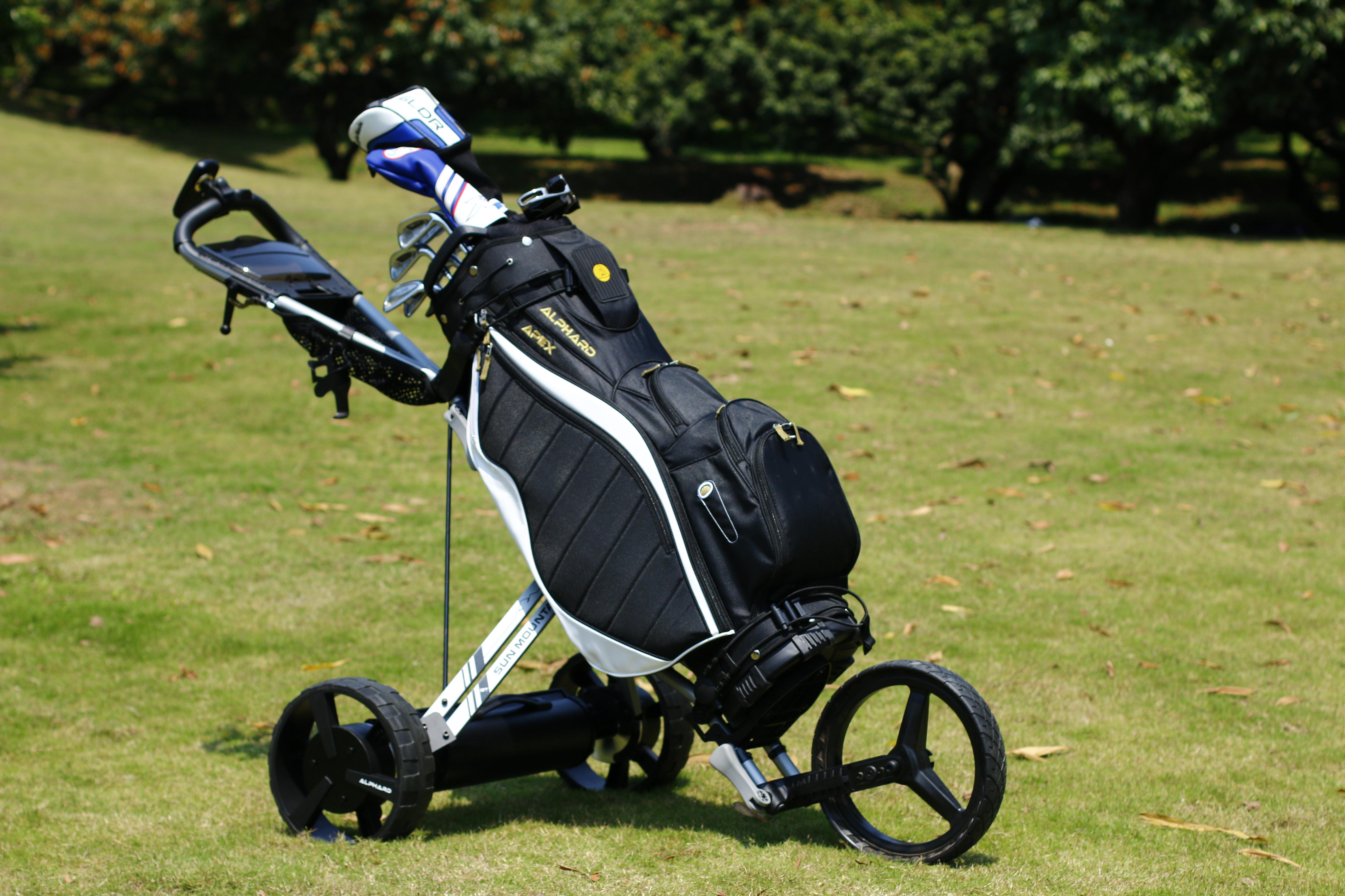 Alphard Golf   CB eWheels   Hong Kong