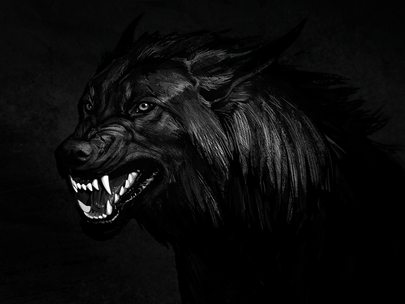 The Beast of Insecurity