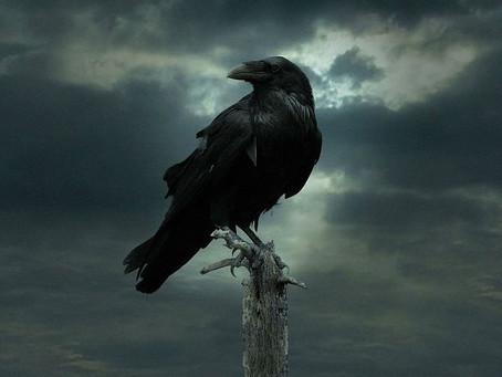 A Raven's Dance (Conclusion)