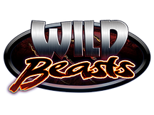 WB Title Icon.png