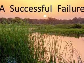 A Successful Failure
