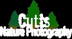 CuttsB2.png