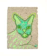 green cat 240.jpg
